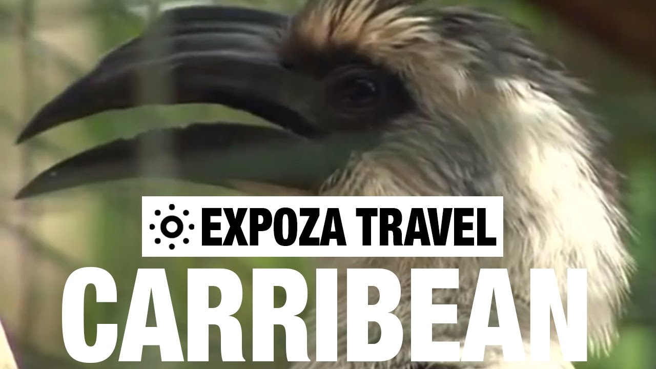 Read more about the article The Caribbean Vacation Travel Video Guide